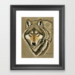Gray Wolf Timber Wolf Portrait Framed Art Print