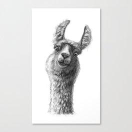 Cute Llama G135 Canvas Print