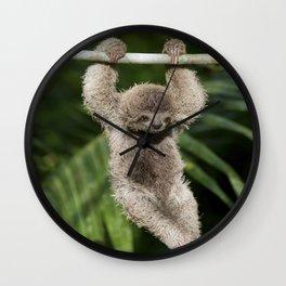 Hanging Around - Baby Three-toed Sloth Wall Clock