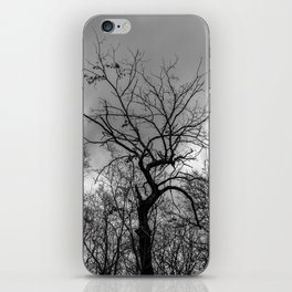 Witchy black and white tree iPhone Skin