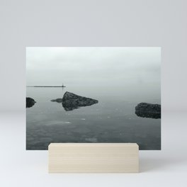 Lake views Mini Art Print