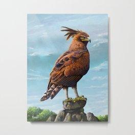 Long Crested Eagle Metal Print
