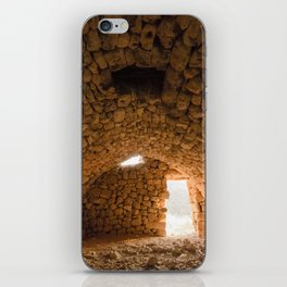 Ruins at sunset iPhone Skin