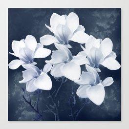 Magnolia 3 Canvas Print