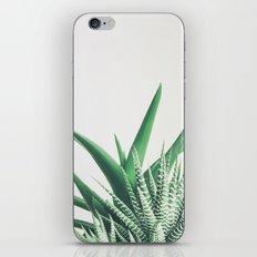 Overlap iPhone & iPod Skin
