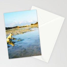 PERROS DEL MUNDO (INDONESIA) Stationery Cards