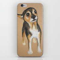 chihuahua iPhone & iPod Skins featuring Chihuahua by PaperTigress