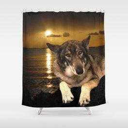 Dog German Shepherd and Sunset Shower Curtain