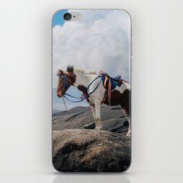 The Horse and the Volcano iPhone Skin