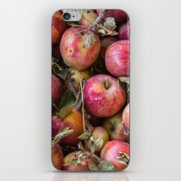 Pile of freshly picked organic farm apples with imperfections iPhone Skin
