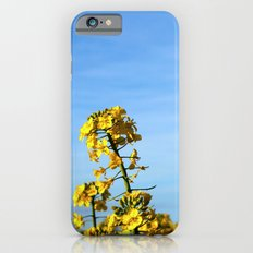 Sunny Day Slim Case iPhone 6s