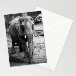 Gentle One Stationery Cards