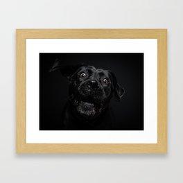 what a surprise! Framed Art Print