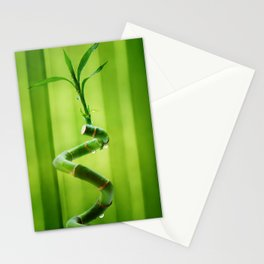Lucky Bamboo 11 Stationery Cards