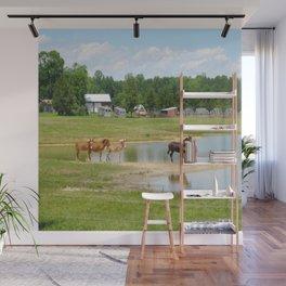 Horses. Animals. Nature Photography. Pennsylvania Wall Mural