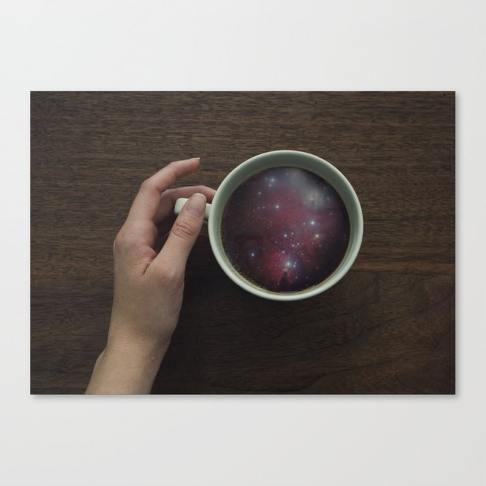 Morning Microcosm Canvas Print