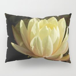 White water lilies 5 Pillow Sham