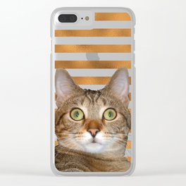 Bailey stripes Clear iPhone Case