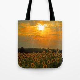 Field of Sunflowers at Sunset Tote Bag