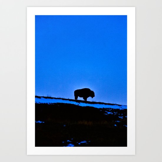 The Last Buffalo Art Print