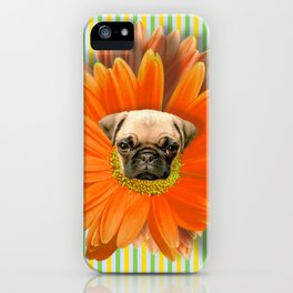Pistil Pug iPhone Case