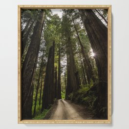 Redwoods Make Me Smile - Nature Photography Serving Tray
