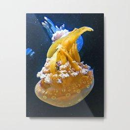 Jelly Fish, Pysgod Wibli Wobli Metal Print