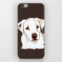 golden retriever iPhone & iPod Skins featuring Golden retriever by Pendientera