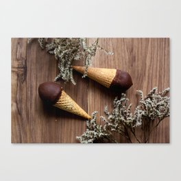 Ice creams Canvas Print