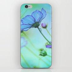 Softness iPhone & iPod Skin