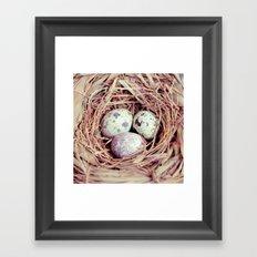 Birds Nest Eggs Framed Art Print
