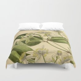 Clematis pavoliniana Duvet Cover