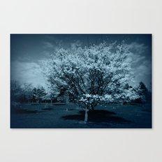 Before the Rain came Canvas Print