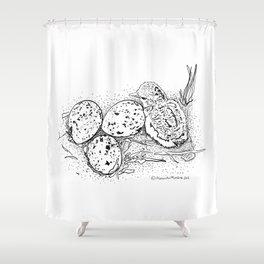 American Oystercatcher nest Shower Curtain