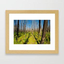 Desolate Death Framed Art Print