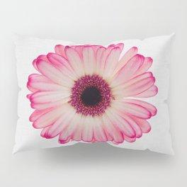 Daisy Still Life Pillow Sham
