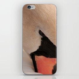 Graceful Swan iPhone Skin