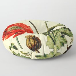 Poppy picture from 1900 Floor Pillow