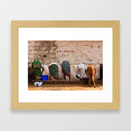 Indian Women and Cow Framed Art Print