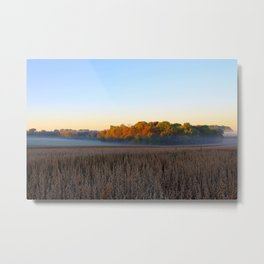 First Frost and a Foggy Morning Metal Print