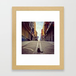 The Cat and Istanbul Framed Art Print