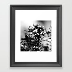 Untitled I. Framed Art Print