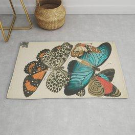 E.A.Séguy - Papillons / Butterflies (1925) Plate 11 Rug