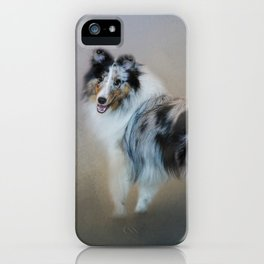Did You Call Me - Blue Merle Shetland Sheepdog iPhone Case
