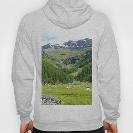 Alpes in summer Hoody