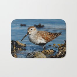 Bird on the Beach / A Solitary Dunlin Bath Mat