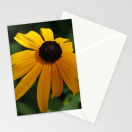 Golden glow of a black-eyed Susan, Rudbeckia Stationery Cards
