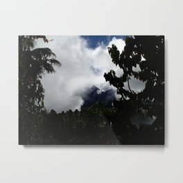 Through trees and mist Metal Print