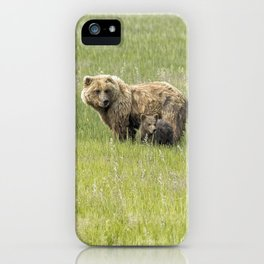 Mother Brown Bear With Her Two Cubs, No. 1 iPhone Case