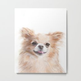 Chihuahua - The Cute Cheerful Small Dog Metal Print